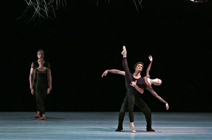 Гомосексуальность среди студентов академии русского балета