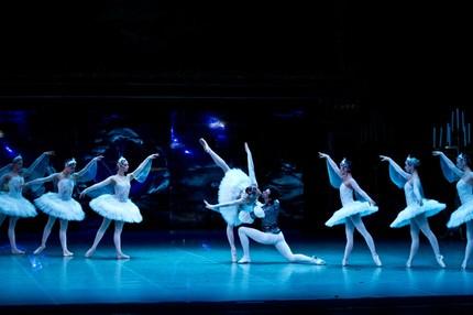 «Лебеди-феи у Чайковского — это символ свободы»
