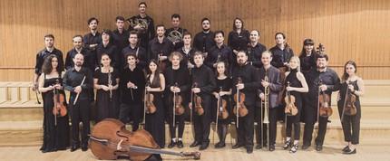 Камерный оркестр Тарусы выступит в Петербурге